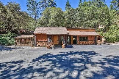 Placerville Single Family Home For Sale: 5610 Bucks Bar Road
