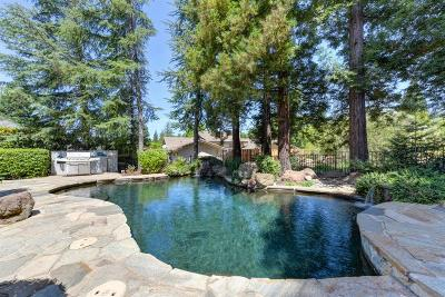 Rancho Murieta Single Family Home For Sale: 14650 Guadalupe Drive