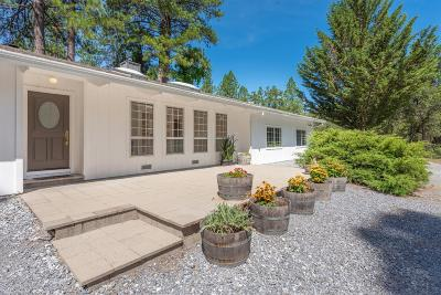 El Dorado County Single Family Home For Sale: 3181 Corral Trail Road