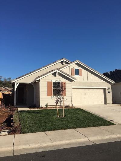 Ione Single Family Home For Sale: 722 Foothill Boulevard