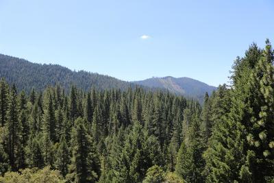 Sierra County Single Family Home For Sale: 200 Craycroft Ridge Road