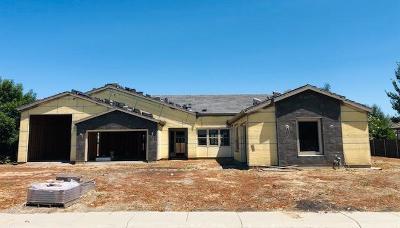 Colusa Single Family Home For Sale: 108 Tara Drive