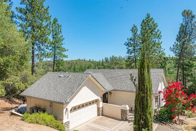 Sutter Creek Single Family Home For Sale: 16430 Meadow Road
