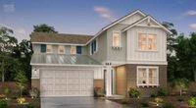 Mountain House Single Family Home For Sale: 236 East Natasha Avenue