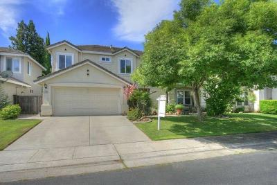 Sacramento County Single Family Home For Sale: 3705 Grand Point Lane