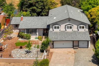 El Dorado Hills Single Family Home For Sale: 2991 Richardson Circle