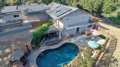 Pine Grove Single Family Home For Sale: 11530 Quail Court