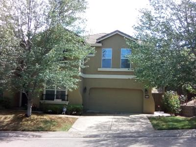 Folsom Single Family Home For Sale: 1835 Orchard Terrace Court
