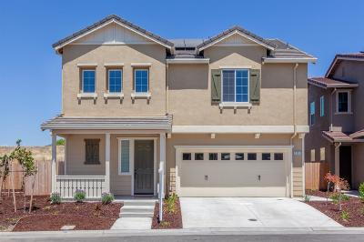 Rocklin Single Family Home For Sale: 1331 Orchid Drive