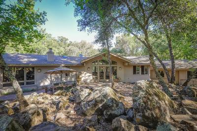 Grass Valley Single Family Home For Sale: 18089 Wolf Creek Road