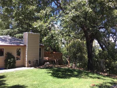 Placerville Single Family Home For Sale: 1793 Union Ridge Road