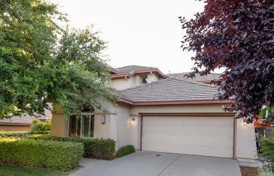 El Dorado Hills Single Family Home For Sale: 4093 Arenzano Way