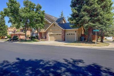 Granite Bay Single Family Home For Sale: 9641 Swan Lake Drive