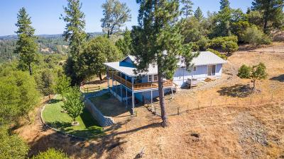 Sutter Creek Single Family Home For Sale: 14748 Sutter Highlands Drive