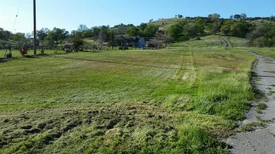 Valley Springs Residential Lots & Land For Sale: 8239 Olive Branch Drive