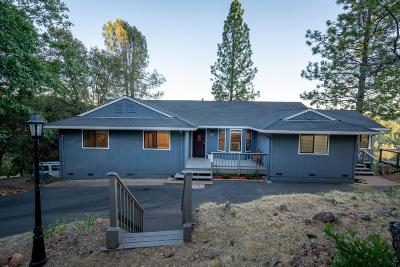 Pine Grove Single Family Home For Sale: 15421 Lupe Road