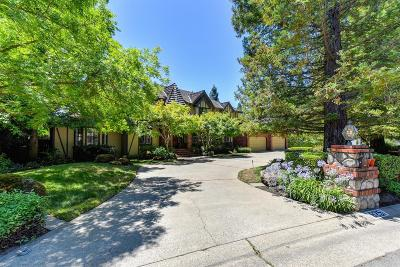 Orangevale Single Family Home For Sale: 8251 Country Lake Drive