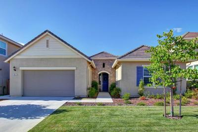 Rocklin Single Family Home For Sale: 5661 Black Willow St