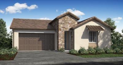 Rancho Cordova Single Family Home For Sale: 12745 Cordyline Way
