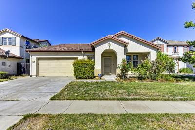 Elk Grove Single Family Home For Sale: 10286 Gilliam Drive