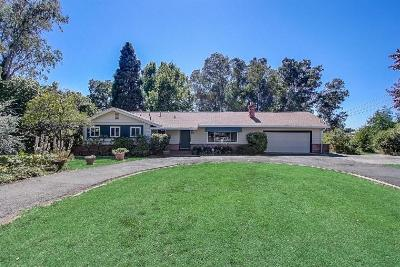 Rio Linda Single Family Home For Sale: 6833 West 2nd Street