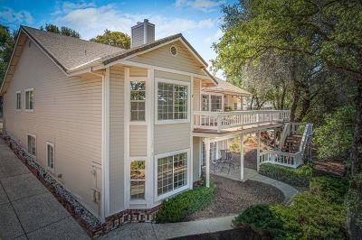 Penn Valley Single Family Home For Sale: 13903 Hemlock Drive