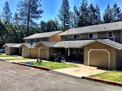 Pine Grove Multi Family Home For Sale: 13610 Foothill Pines Court