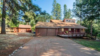Foresthill Single Family Home For Sale: 5559 Glen Drive