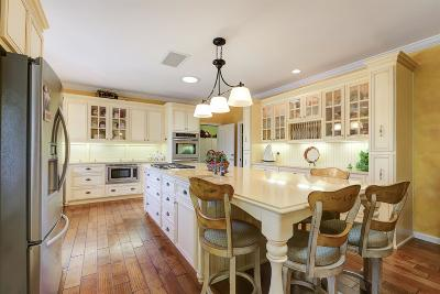 Grass Valley Single Family Home For Sale: 13530 Eowana Lane