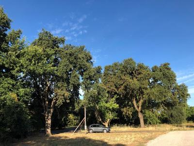 Davis Residential Lots & Land For Sale: 38392 La Rue