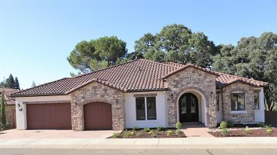Folsom Single Family Home For Sale: 784 Lorena Lane