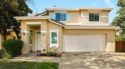 Elk Grove Single Family Home For Sale: 3925 Riviera Lane