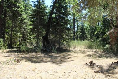 Nevada City Residential Lots & Land For Sale: 13118 Golden Eagle