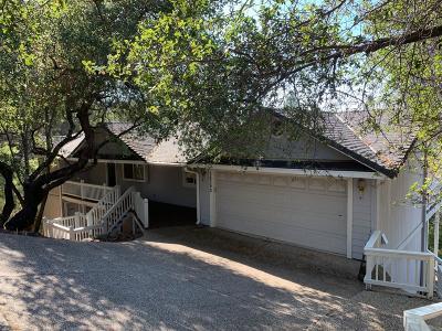 Penn Valley Single Family Home For Sale: 18390 Fair Oaks Drive