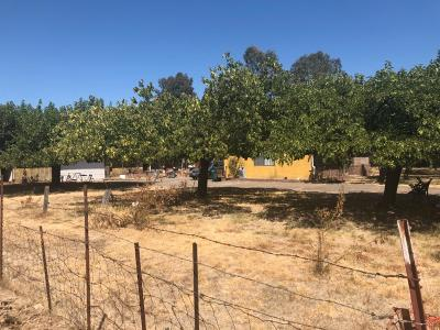 San Joaquin County, Stanislaus County Single Family Home For Sale: 11603 East Peltier Road