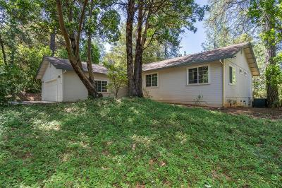Placerville Single Family Home For Sale: 6561 Highgrade Ct