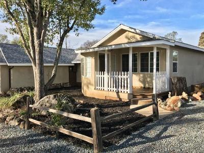 Auburn Single Family Home For Sale: 4555 Paradise Lane
