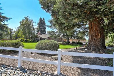 Elk Grove Single Family Home For Sale: 10630 Sheldon Woods Way