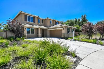 Sacramento Single Family Home For Sale: 8065 Crane Hawk Court