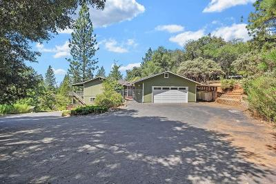 Pine Grove Single Family Home For Sale: 20381 Wildflower Lane