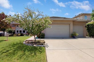 Fair Oaks Single Family Home For Sale: 8578 Jaytee Way