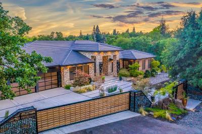Carmichael Single Family Home For Sale: 6600 Palm Drive