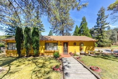 Placerville Single Family Home For Sale: 1630 Shiloh Court