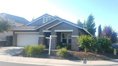 Roseville Single Family Home For Sale: 1900 Terracina Circle