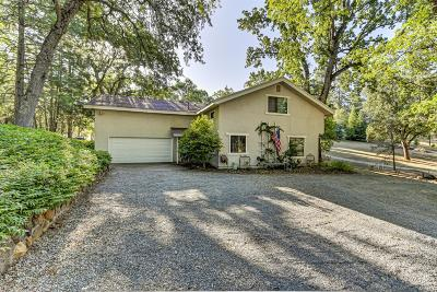 Placerville Single Family Home For Sale: 4520 Chapparal Drive