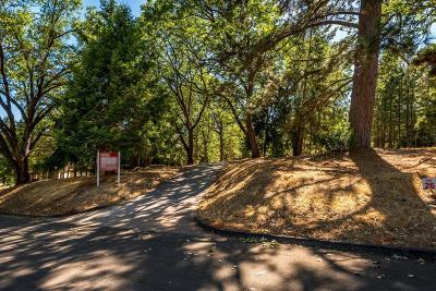 Foresthill Residential Lots & Land For Sale: 4510 Porta Venare Court