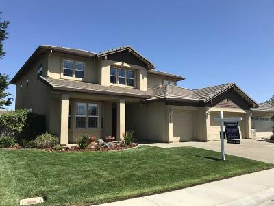 Elk Grove Single Family Home For Sale: 9065 Quail Tree Court