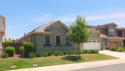 Elk Grove Single Family Home For Sale: 8700 Vizela