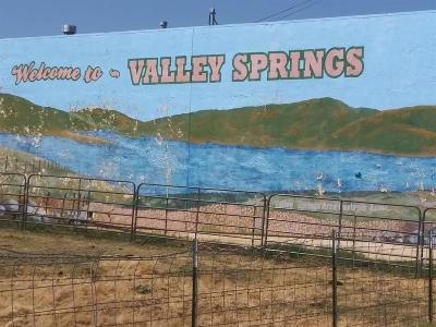 Valley Springs Residential Lots & Land For Sale: 2194 Partridge Drive