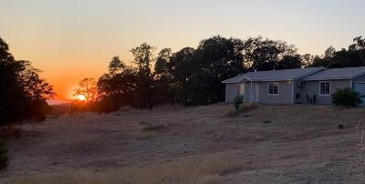 Nevada County Single Family Home For Sale: 12480 Honey Mushroom Lane